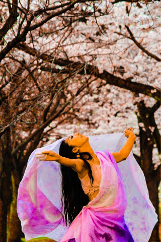 桜とベリーダンス